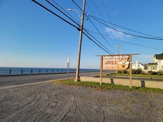 Bâtisse commerciale à vendre à Cap-Chat, Gaspésie/Îles-de-la-Madeleine, 72, Rue  Notre-Dame Est, 9622475 - Centris.ca