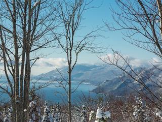 Terrain à vendre à Baie-Saint-Paul, Capitale-Nationale, Chemin du Domaine-Charlevoix, 25431828 - Centris.ca