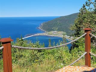 Chalet à vendre à Saint-Maxime-du-Mont-Louis, Gaspésie/Îles-de-la-Madeleine, Chemin du Lac-Lemieux, 20684594 - Centris.ca