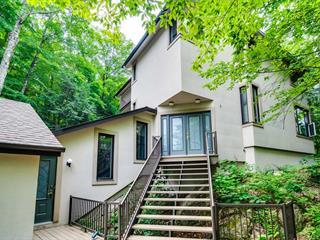 Maison à vendre à Chelsea, Outaouais, 1337, Route  105, 21645007 - Centris.ca