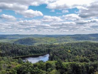 Land for sale in Saint-Adolphe-d'Howard, Laurentides, Chemin  Indian, 12051347 - Centris.ca