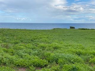 Terrain à vendre à Bonaventure, Gaspésie/Îles-de-la-Madeleine, Route  132 Est, 22345603 - Centris.ca