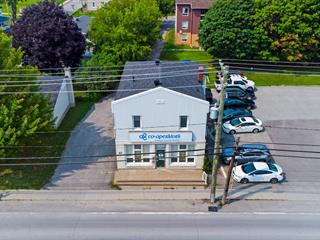 Bâtisse commerciale à vendre à Gatineau (Masson-Angers), Outaouais, 45, Chemin de Montréal Est, 26805846 - Centris.ca