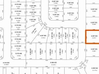 Terrain à vendre à Princeville, Centre-du-Québec, 19, Rue  Thibaudeau, 26959505 - Centris.ca