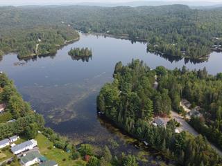 Terrain à vendre à Chertsey, Lanaudière, Chemin du Lac-Brûlé, 15667966 - Centris.ca