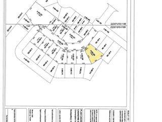 Terrain à vendre à Saguenay (La Baie), Saguenay/Lac-Saint-Jean, 6430329, Rue des Parulines, 10857204 - Centris.ca