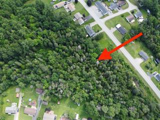Terrain à vendre à Bryson, Outaouais, Rue  Principale, 23467083 - Centris.ca
