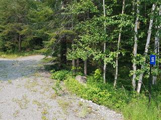 Lot for sale in Preissac, Abitibi-Témiscamingue, 55, Chemin des Épinettes, 17386419 - Centris.ca