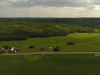 Fermette à vendre à Métabetchouan/Lac-à-la-Croix, Saguenay/Lac-Saint-Jean, 1780, 1er Rang, 12819033 - Centris.ca