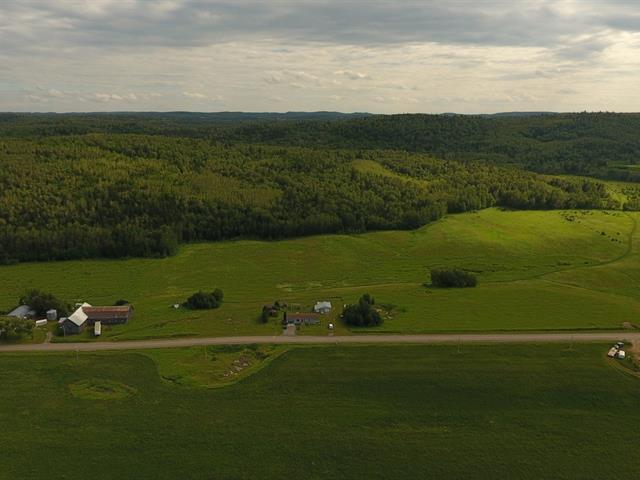 Hobby farm for sale in Métabetchouan/Lac-à-la-Croix, Saguenay/Lac-Saint-Jean, 1780, 1er Rang, 12819033 - Centris.ca