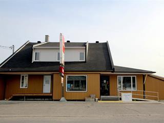 Bâtisse commerciale à vendre à Saint-Honoré-de-Témiscouata, Bas-Saint-Laurent, 125, Rue  Principale, 25031377 - Centris.ca