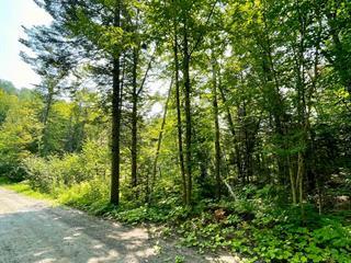 Terrain à vendre à Saint-Mathieu-du-Parc, Mauricie, Chemin de la Presqu'île, 13784010 - Centris.ca