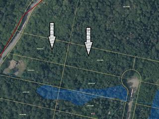 Lot for sale in Gore, Laurentides, Chemin  Stephenson, 16318230 - Centris.ca
