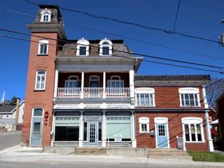Immeuble à revenus à vendre à Rivière-du-Loup, Bas-Saint-Laurent, 121, Rue  Témiscouata, 25197017 - Centris.ca