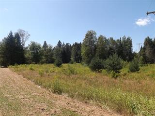 Terrain à vendre à Arundel, Laurentides, Chemin du Golf, 26091176 - Centris.ca
