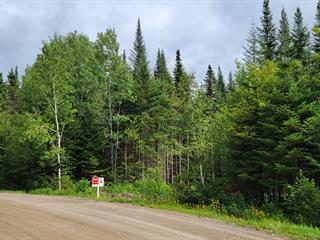 Lot for sale in Lantier, Laurentides, Chemin de la Rivière, 24171176 - Centris.ca