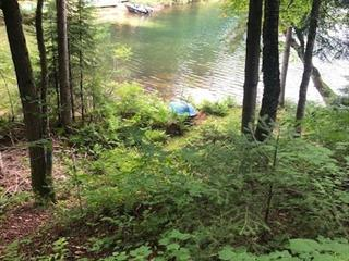 Land for sale in Otter Lake, Outaouais, 225, Chemin  Stephens, 10326117 - Centris.ca