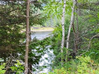 Land for sale in Low, Outaouais, Route  105, 27818710 - Centris.ca