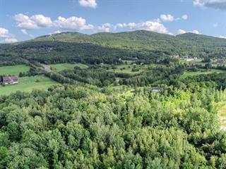 Terrain à vendre à Bromont, Montérégie, Chemin des Carrières, 22243088 - Centris.ca