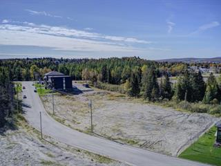 Lot for sale in Thetford Mines, Chaudière-Appalaches, Rue du Bassin, 15557205 - Centris.ca