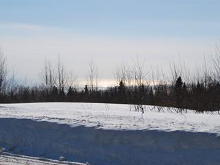 Terrain à vendre à Petite-Rivière-Saint-François, Capitale-Nationale, Chemin du Multi-Bois, 16749303 - Centris.ca