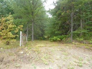 Terrain à vendre à Saint-Félicien, Saguenay/Lac-Saint-Jean, Route  Saint-Eusèbe, 26382422 - Centris.ca