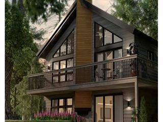 Maison à vendre à Wentworth-Nord, Laurentides, Chemin des Montfortains, 11440492 - Centris.ca