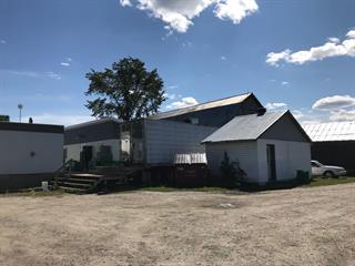 Farm for sale in Litchfield, Outaouais, 25, Chemin  Stewart, 17374894 - Centris.ca