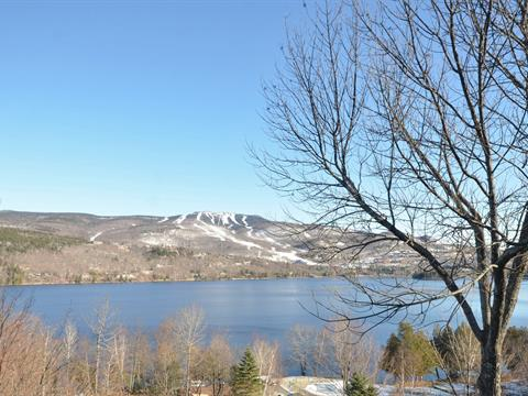 Condo for sale in Mont-Tremblant, Laurentides, 129, Rue  Cuttle, apt. 223-224, 11409132 - Centris.ca