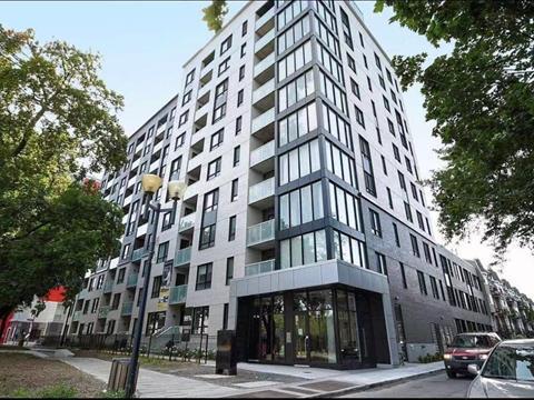 Condo / Appartement à louer à Ville-Marie (Montréal), Montréal (Île), 1170, Rue  Montcalm, app. 102, 13617382 - Centris.ca