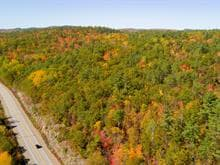 Land for sale in Waltham, Outaouais, Route  148, 25445048 - Centris.ca