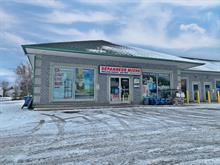 Business for sale in Gatineau (Buckingham), Outaouais, 422, Rue  Haspect, 24088950 - Centris.ca