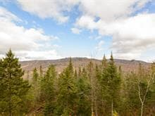Lot for sale in Mont-Tremblant, Laurentides, Chemin de la Réserve, 9597104 - Centris.ca