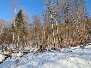 Lot for sale in Stoneham-et-Tewkesbury, Capitale-Nationale, 7, Chemin des Bolets, 10367294 - Centris.ca