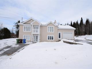 House for sale in Thetford Mines, Chaudière-Appalaches, 1477, Rue  Bilodeau, 19280319 - Centris.ca