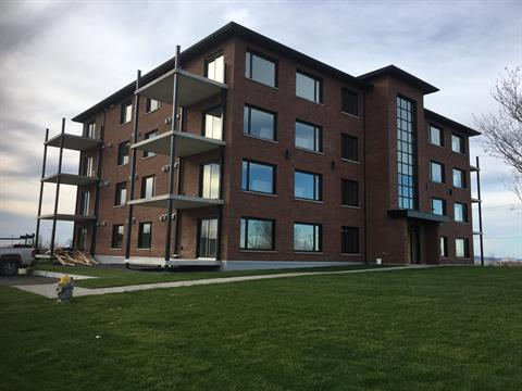 Condo / Apartment for rent in Rouyn-Noranda, Abitibi-Témiscamingue, 744, Rue  Perreault Est, apt. 101, 13783257 - Centris.ca