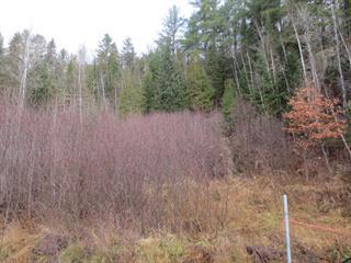 Terrain à vendre à Mandeville, Lanaudière, Chemin du Lac-Hénault Nord, 25285909 - Centris.ca