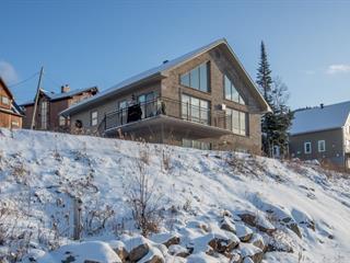Cottage for sale in Saint-David-de-Falardeau, Saguenay/Lac-Saint-Jean, 100, Rue de Courmayeur, 15739697 - Centris.ca