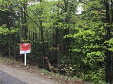 Terrain à vendre à Rawdon, Lanaudière, Chemin du Lac-Gratten, 28390954 - Centris.ca