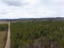 Land for sale in Mansfield-et-Pontefract, Outaouais, Chemin du Trécarré, 23066026 - Centris.ca
