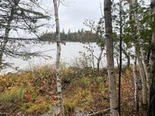 Terrain à vendre à Preissac, Abitibi-Témiscamingue, 6, Chemin  Mon-Repos, 12247196 - Centris.ca
