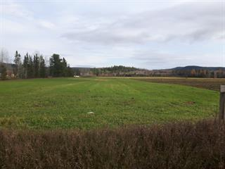 Land for sale in Sainte-Émélie-de-l'Énergie, Lanaudière, Route  Saint-Joseph, 14555536 - Centris.ca