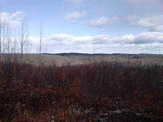 Terrain à vendre à Sainte-Anne-des-Lacs, Laurentides, Chemin des Paquerettes, 17786867 - Centris.ca