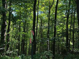 Lot for sale in Grenville-sur-la-Rouge, Laurentides, Chemin des Hauteurs, 28951661 - Centris.ca
