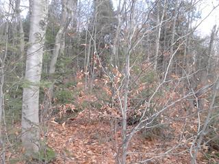 Terrain à vendre à Sainte-Anne-des-Lacs, Laurentides, Chemin des Paquerettes, 13486854 - Centris.ca