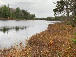 Lot for sale in Notre-Dame-de-Montauban, Mauricie, Chemin du Lac-du-Domaine, 28550352 - Centris.ca