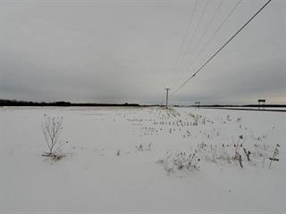 Terrain à vendre à Saint-Hugues, Montérégie, Rte  Yamaska, 14588983 - Centris.ca