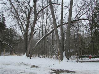Terrain à vendre à North Hatley, Estrie, Chemin  Massawippi, 12317932 - Centris.ca