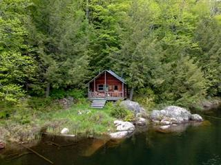 Terre à vendre à Ripon, Outaouais, 82, Chemin du Mont-Grand-Pic, 9984294 - Centris.ca
