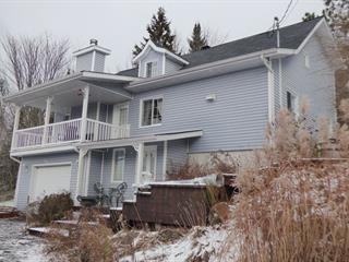 House for sale in Saint-Alphonse-Rodriguez, Lanaudière, 100, Rue  Beauchamp, 18142109 - Centris.ca